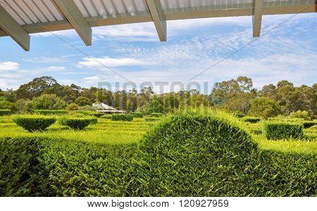 Hedge Maze Overlook