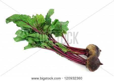 bunch of fresh beets on white background