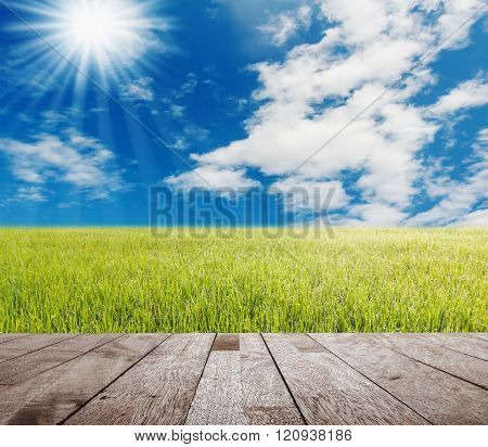 Wood Table Top On Green Gass With Blue Sky And White Cloud