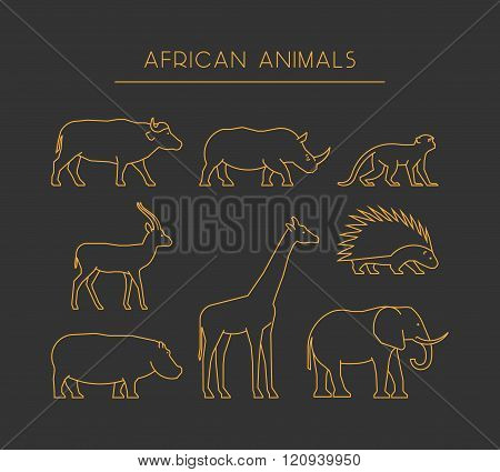 Vector Line African Animals. Gold Silhouettes African Animals.