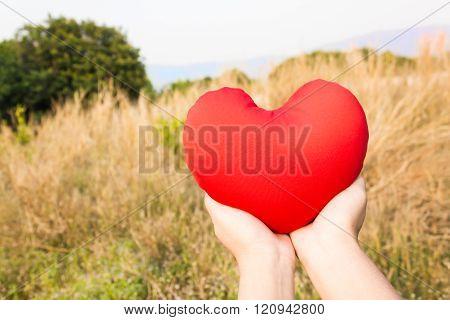 Women Hand Gently Hold Red Heart On Wild Grass Flower Field Background