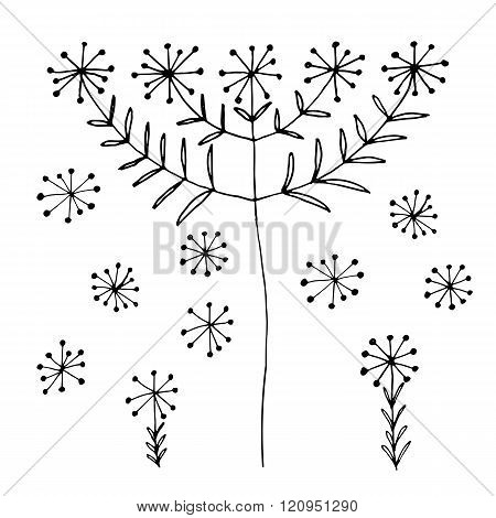 Set of abstract black hand drawn dandelion blowball flowers in doodle style. Vector Illustration EPS
