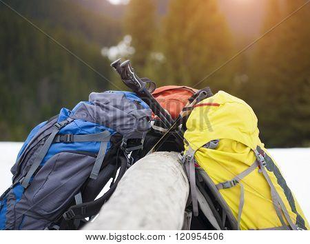 Backpacks And Walking Sticks.