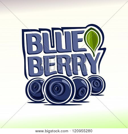 Vector illustration on the theme of  blueberry
