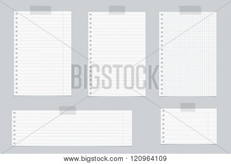 Pieces of white lined and squared notebook paper with sticky tape on gray background