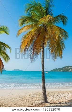 St. Thomas, US Virgin Islands Magen's Bay beautiful beach scene vertical