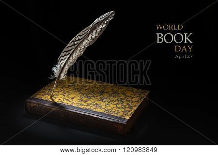 Feather Standing On An Old Book Against A Black Background, Sample Text In The Copy Space World Book