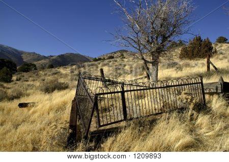 Desolate Gravesite