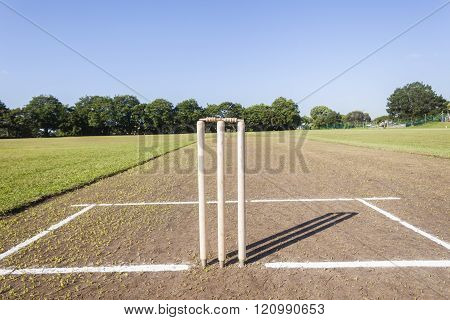 Cricket Pitch Wickets Field