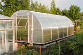 Теплицы для выращивания овощей круглый год своими руками