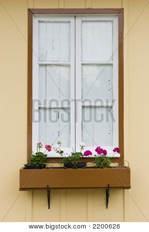 Window With Flowerbed