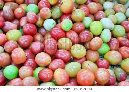 Fresh Tomatos