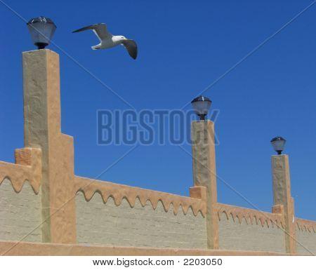 Seagull Ramparts