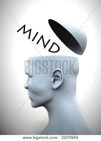 Think Head 24