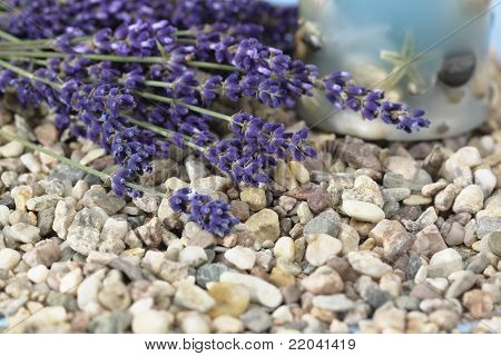 Spa Background With Lavender /lavandula Angustifolia Aromatico/