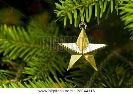 Star Shape Christmas Tree Decoration