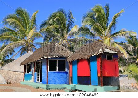 hut palapa colorful with tropical cabin and  palm trees