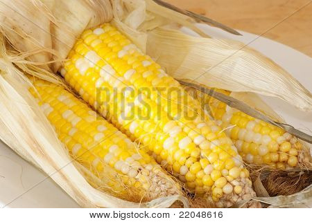 Corn Steamed In Husk