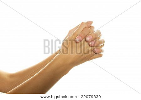 Women Hands In Prayer