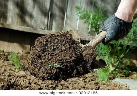 Shovel Full Of Dirt