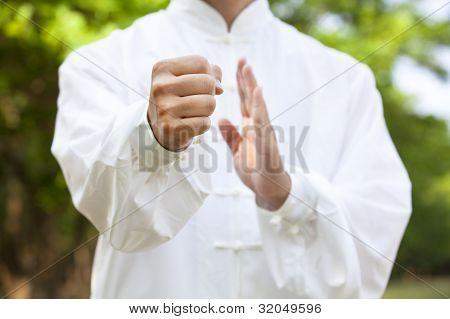 Hand des Kung Fu Mann in Lage