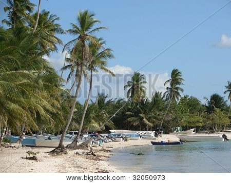 Dominican Republic Beach Scenery