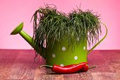 Watering Can With Agretti And Chili Peppers