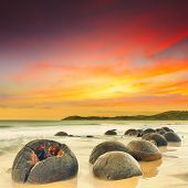 stock photo of natural phenomena  - Moeraki Boulders at sunset - JPG