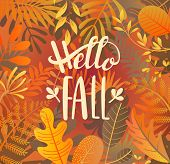 Hello Fall Greeting Banner On Jungle Background With Tropical Leaves. Welcome Autumn Banner. Invitat poster