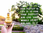 Your Purpose In Life Is To Find Your Purpose And Give Your Whole Heart And Soul To It - Buddha poster