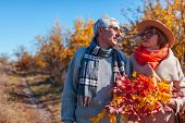 Senior Couple Walking In Autumn Forest. Middle-aged Man And Woman Chilling Outdoors poster