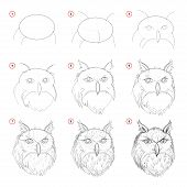 Creation Step By Step Pencil Drawing. Page Shows How Learn To Draw Sketch Of Imaginary Owls Head. Pr poster