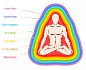 Aura Bodies. Rainbow Colored Labeled Layers Of A Male Body. Etheric, Emotional, Mental, Astral, Cele poster