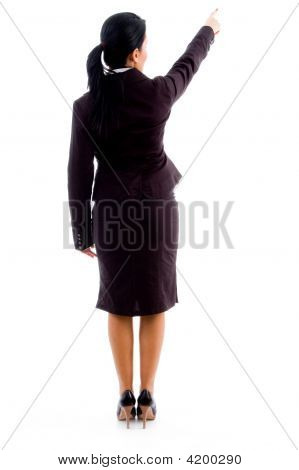 Back Pose Of Young Businesswoman Pointing