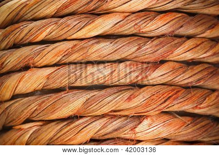 Twisted Wooden Fibres