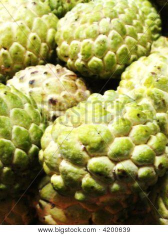 Atis, A Philippine Fruit