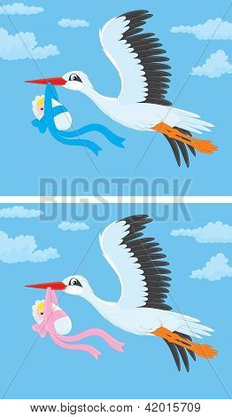 Stork with a newborn baby
