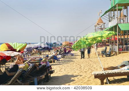 Busy Sandy Beach Scene