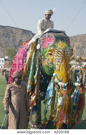 Decorated Elephant At The Jaipur Festival