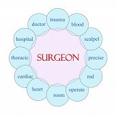 pic of scalpels  - Surgeon concept circular diagram in pink and blue with great terms such as doctor trauma blood scalpel md and more - JPG