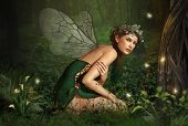 stock photo of fireflies  - an illustration of a nymph who lives in the forest - JPG