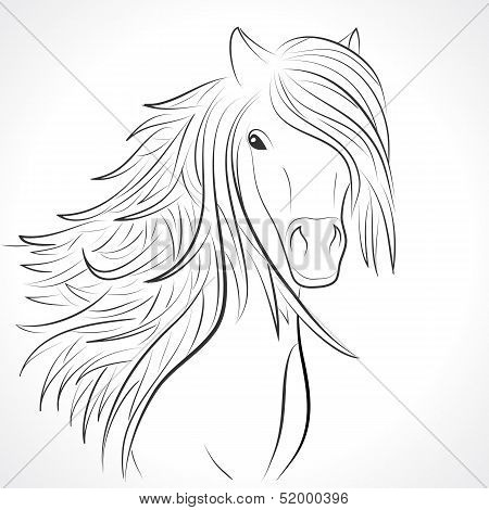 Sketch of horse head with flying mane on white. Vector