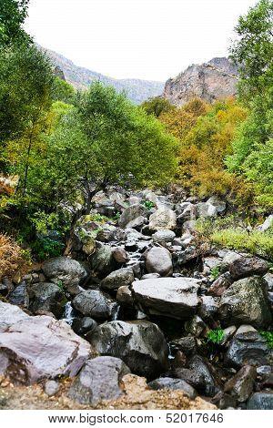 Wet Boulders Of Mountain River In Rain, Armenia