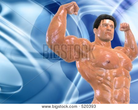 Body Building Bg005