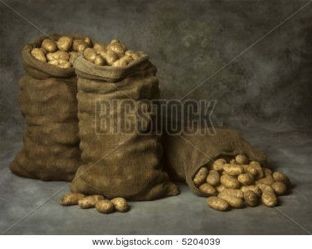 Burlap Sacks Of Potatoes