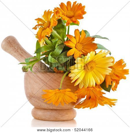 herbal flower of calendula Officinalis in wooden mortar Isolated on white background