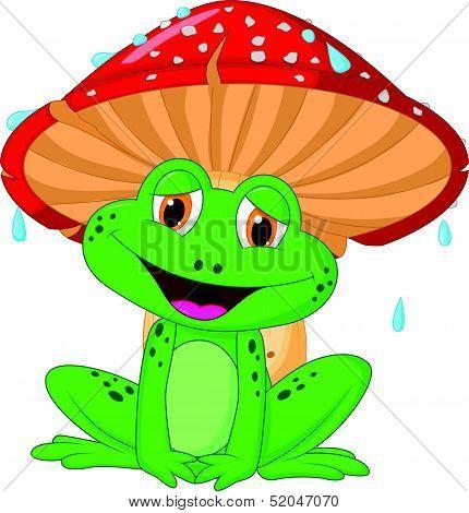 Cartoon mushroom with a toad