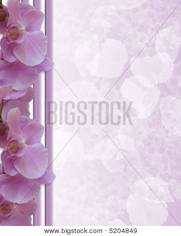 Pink Orchids Border Template
