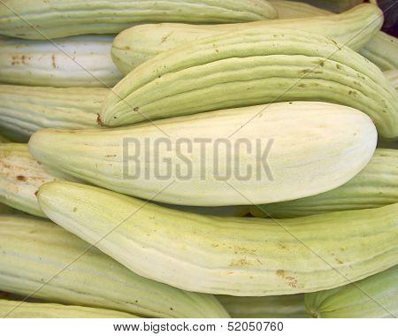 fresh green muskmelons close up