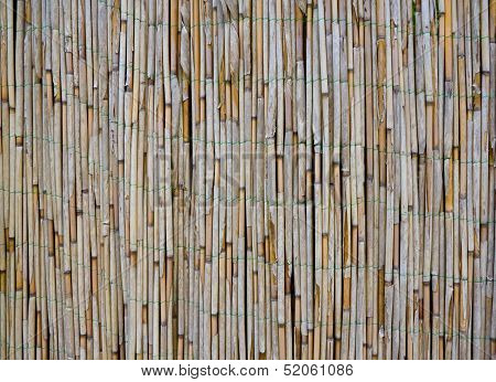 Old Bamboo / Reed Texture